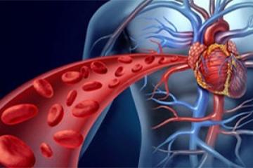 تولید برق از جریان خون